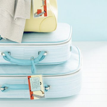 luggage_martha-stewart1